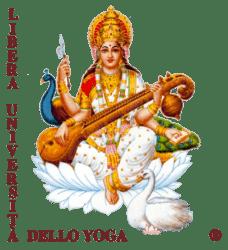 Yoga Vidya Ashram